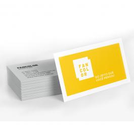 Cartão de visita Básico Supremo 300g 9x5cm 4x4 Verniz Total Frente